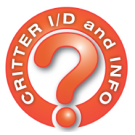 critter-id-logo